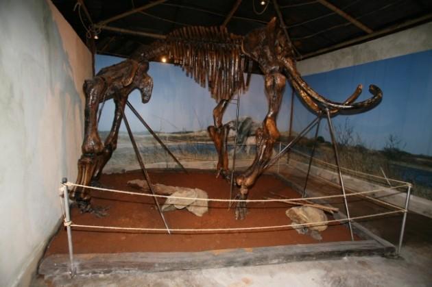 πάρκο δεινοσαύρων 4