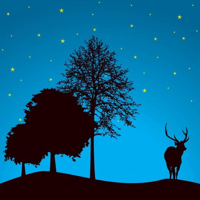 Άγια νύχτα
