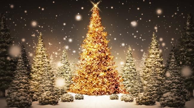 Glowing-Christmas-Trees_FullHDWpp.com_1