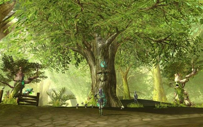 elder tree spririt