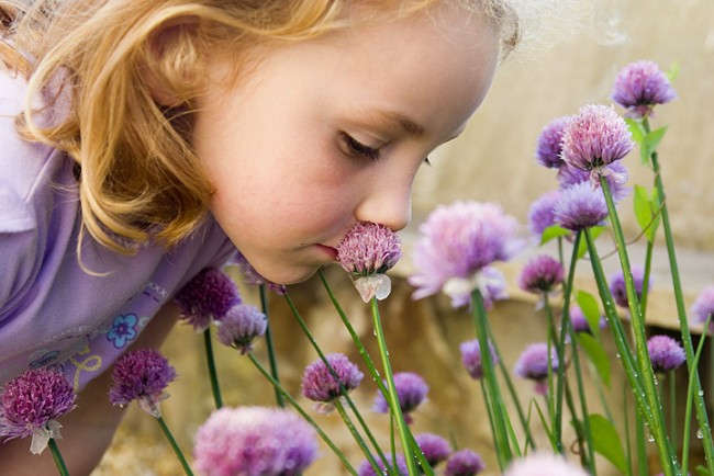 Smelling-Flowers_iStock_000001818177