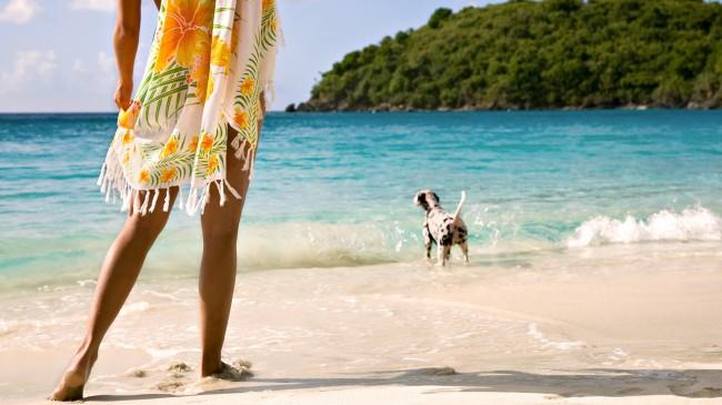 dog-girl-summer-beach-sea-azure-blue-nature