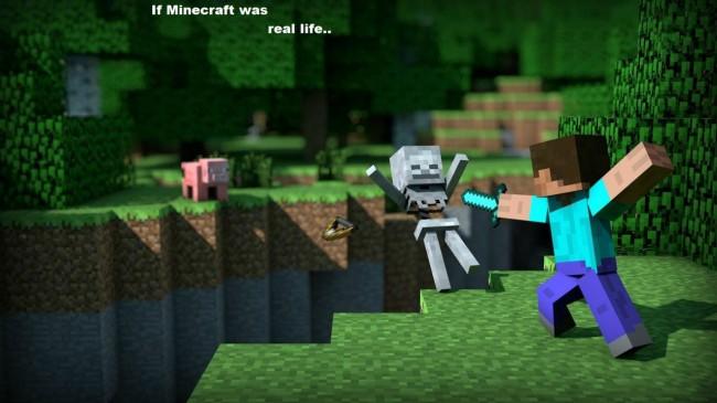 this-is-minecraft_4834805_lrg_5896819_lrg