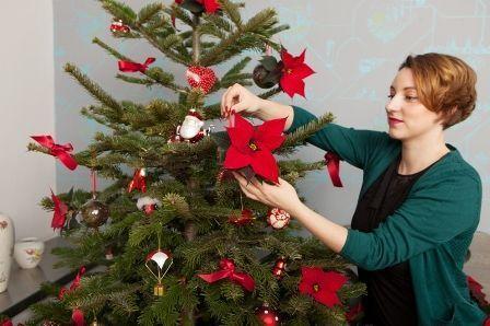 RS66211_4 von 4_Christbaumkugel mit dem Weihnachtsstern_fertigsmall