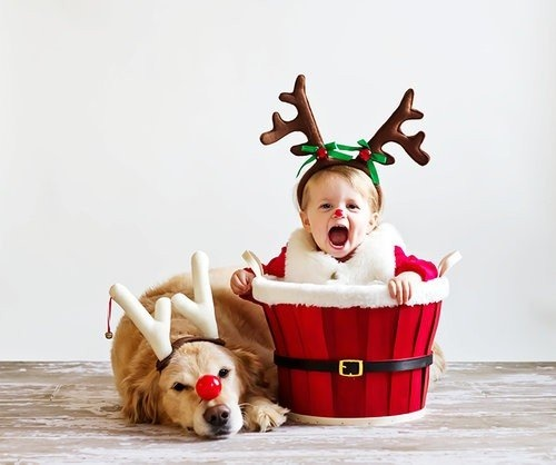 Cute-Christmas-kid-and-dog-photo