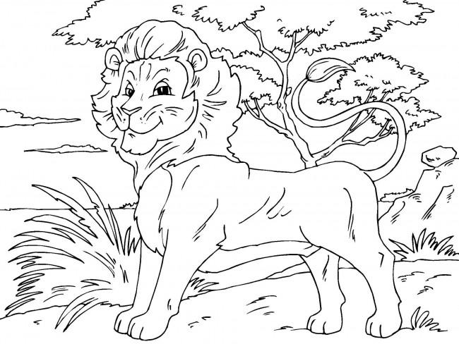 λιοντάρι για ζωγραφική
