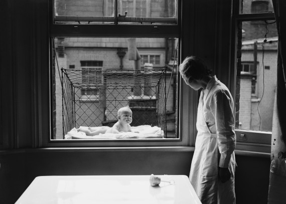 o-BABY-CAGE-WINDOW-570