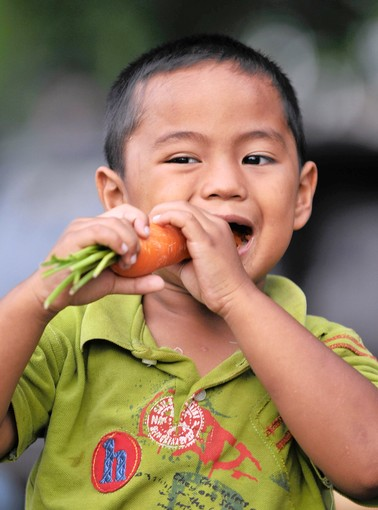 A young boy eats a carrot at a collapsed market in the Sumatran city of Padang on October 2, 2009 after a 7.6-magnitude quake toppled buildings in the area late on September 30. Indonesia said it feared thousands had died in a major earthquake as exhausted rescue workers clawed through mountains of rubble with their bare hands in a race to find survivors. Many familiers were still without shelter, food or electricity as the city's restaurants and shops remained shut, creating more problems for the city's 900,000 inhabitants. AFP PHOTO / Bay ISMOYO (Photo credit should read BAY ISMOYO/AFP/Getty Images) ** TCN OUT **