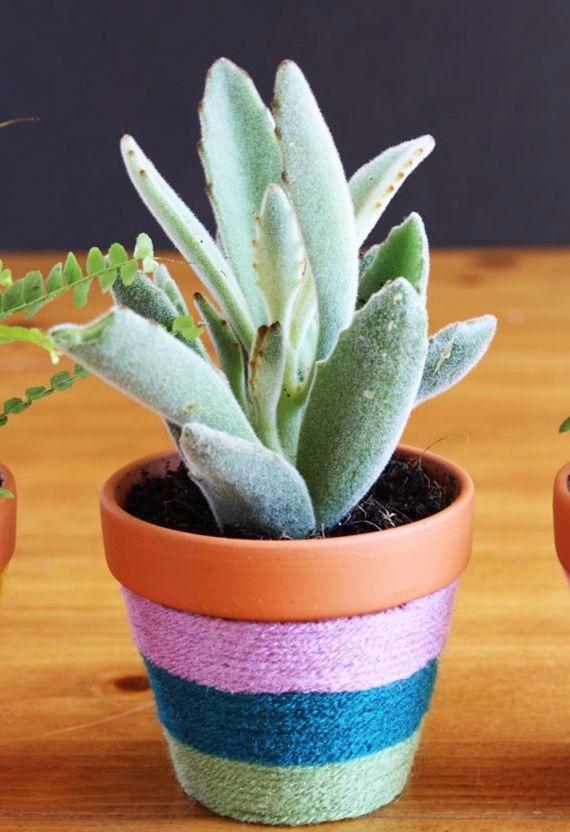 DIY: Γλάστρες, γλαστράκια και κασπό για παχύφυτα, με πολύ χρώμα!