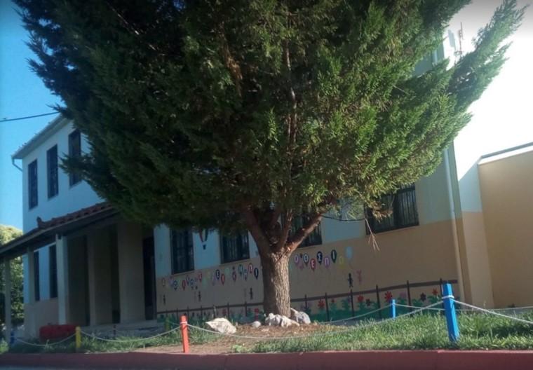 Βρέθηκε σφαίρα στο σχολείο της 8χρονης Αλεξίας που χτυπήθηκε το Πάσχα