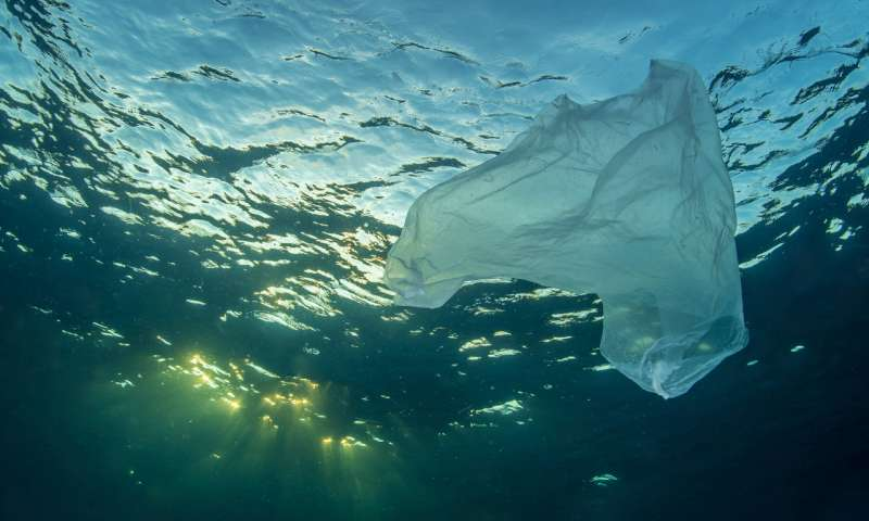 Φοιτήτριες βρήκαν τρόπο για να λύσουν το πρόβλημα των πλαστικών στη θάλασσα