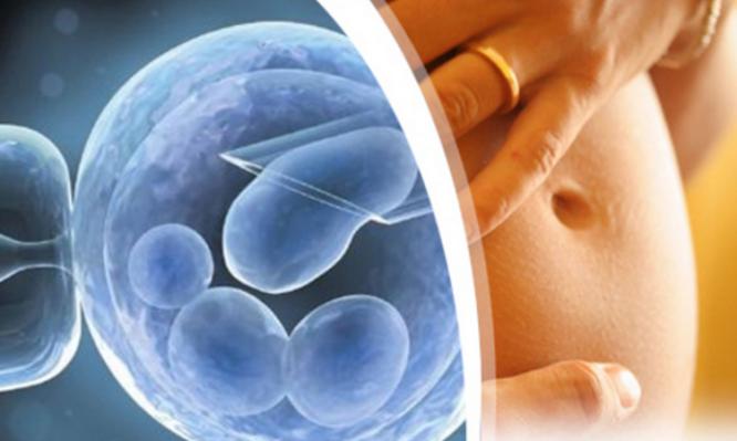 Αναπαραγωγική διαδικασία: Επηρεάζονται τα παραγόμενα έμβρυα από τον κορωνοϊό;