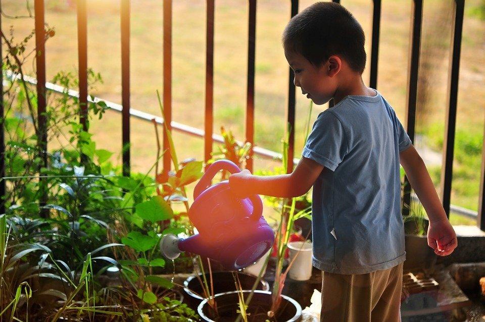 Επιστροφή στον… κήπο: 3 ιδέες για να διασκεδάσουν τα παιδιά με την κηπουρική!
