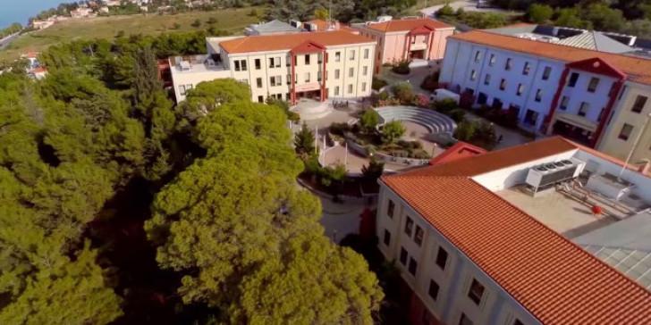 Δείτε τα προγράμματα Ψυχικής Υγείας του Πανεπιστήμιου Αιγαίου