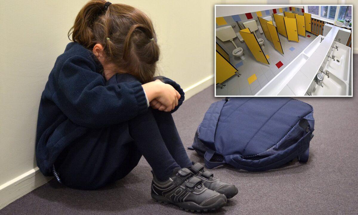 Απίστευτη υπόθεση bullying: Ανάγκασαν παιδιά Νηπιαγωγείου να μιμηθούν σεξουαλικές πράξεις στην τουαλέτα σχολείου