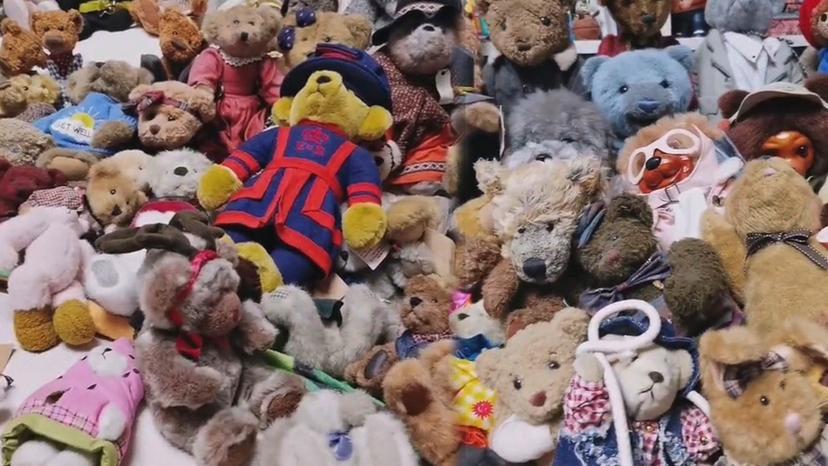 Η viral φωτογραφία της ημέρας: Βρείτε τον σκύλο ανάμεσα στα αρκουδάκια!