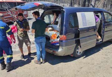 Μαθήματα αλληλεγγύης από τους Έλληνες Προσκόπους: Στο πλευρό των πυροσβεστών και των πυρόπληκτων
