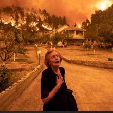 Φωτιές στην Ελλάδα: Πώς θα βοηθήσετε πυρόπληκτους και ζώα