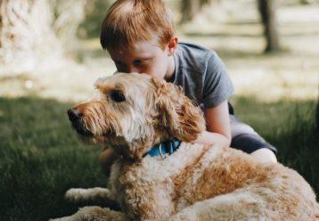 Γιατί τα σκυλιά ζουν λιγότερο από τους ανθρώπους; Η ωραιότερη απάντηση που δόθηκε ποτέ